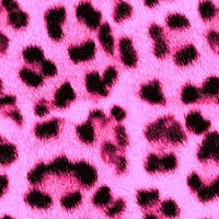 The Truth About Animal Print